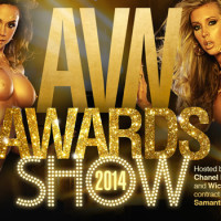 2014 AVN Awards Announces Twitter Casting Call For Trophy Girls
